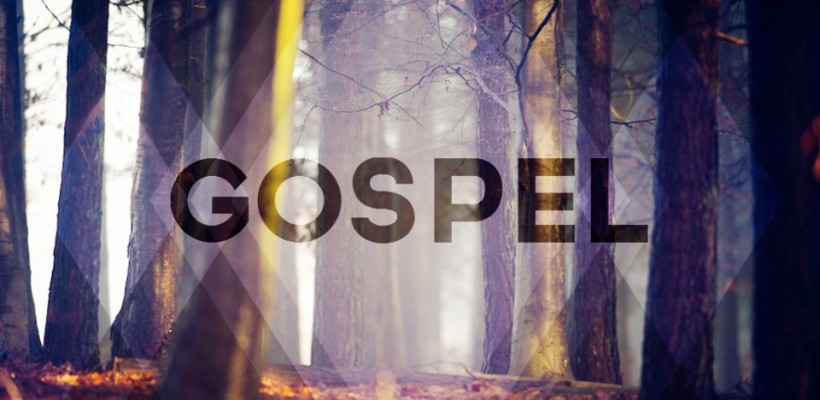 The Fellowship of the Gospel